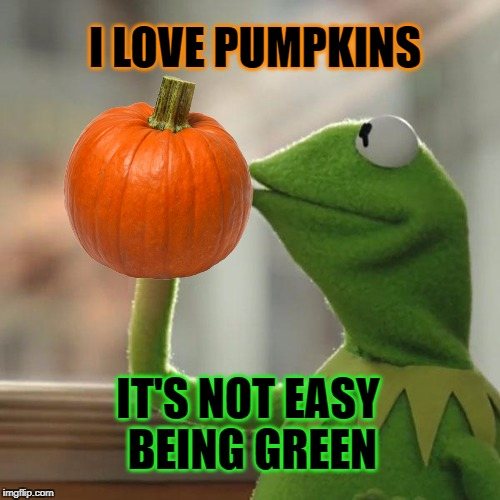 I LOVE PUMPKINS IT'S NOT EASY BEING GREEN | image tagged in kermit the frog,pumpkin,pumpkin spice,great pumpkin,no regrets,kermit the frog meme | made w/ Imgflip meme maker