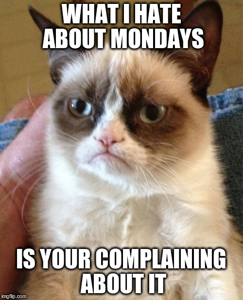 Grumpy Cat Meme | WHAT I HATE ABOUT MONDAYS IS YOUR COMPLAINING ABOUT IT | image tagged in memes,grumpy cat | made w/ Imgflip meme maker