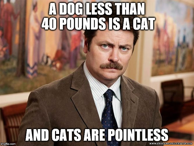 Ron's thoughts on pets | A DOG LESS THAN 40 POUNDS IS A CAT AND CATS ARE POINTLESS | image tagged in ron swanson | made w/ Imgflip meme maker