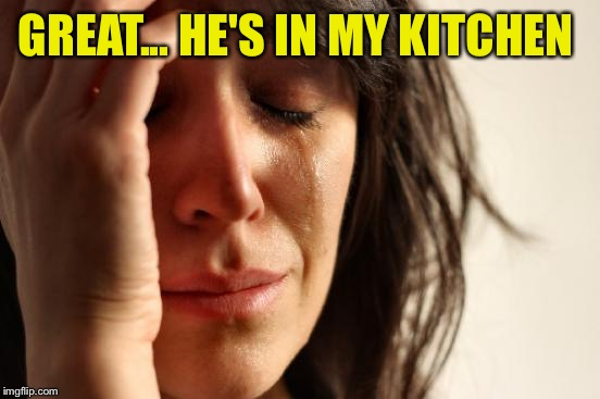 First World Problems Meme | GREAT... HE'S IN MY KITCHEN | image tagged in memes,first world problems | made w/ Imgflip meme maker