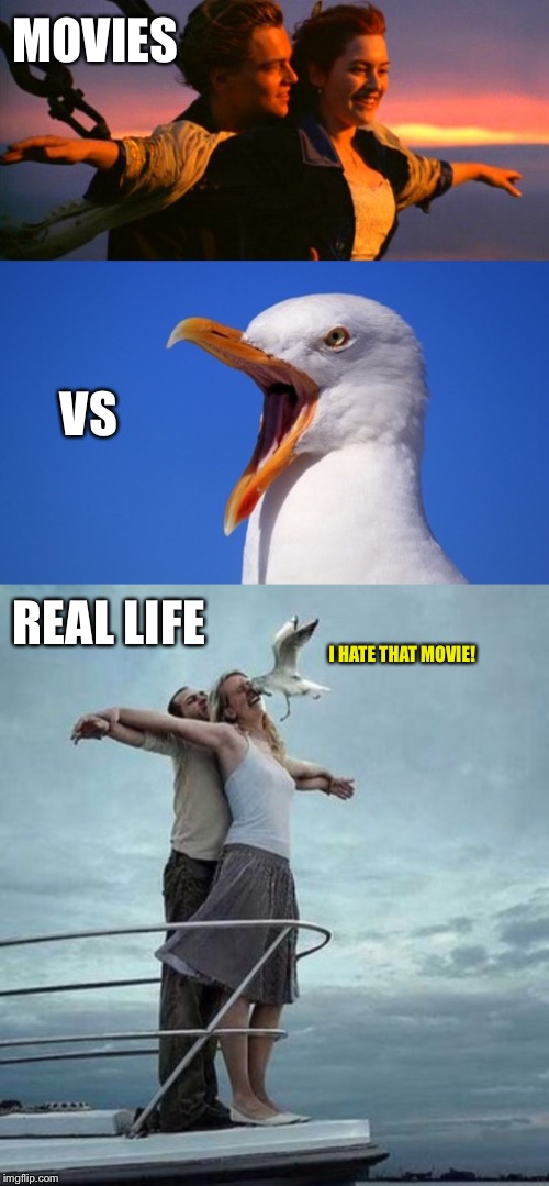 I actually liked Titanic and saw it three times in the theatre  |  MOVIES; VS; REAL LIFE; I HATE THAT MOVIE! | image tagged in titanic,seagull,seagulls,leonardo dicaprio,movie | made w/ Imgflip meme maker