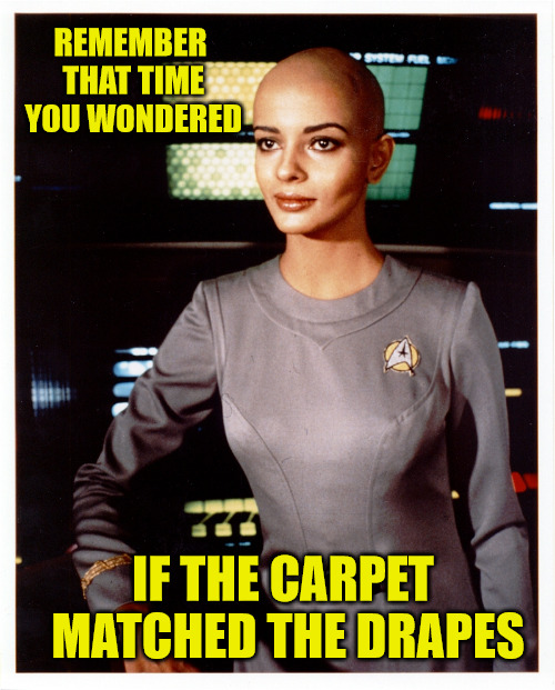 This would be a good time to go where no man has gone before | REMEMBER THAT TIME YOU WONDERED IF THE CARPET MATCHED THE DRAPES | image tagged in star trek,hair color,baldness | made w/ Imgflip meme maker