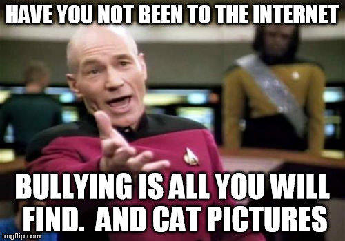 Picard Wtf Meme | HAVE YOU NOT BEEN TO THE INTERNET BULLYING IS ALL YOU WILL FIND.  AND CAT PICTURES | image tagged in memes,picard wtf | made w/ Imgflip meme maker