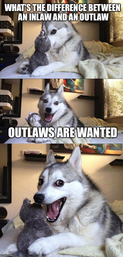 Inlaws and Outlaws | WHAT'S THE DIFFERENCE BETWEEN AN INLAW AND AN OUTLAW OUTLAWS ARE WANTED | image tagged in memes,bad pun dog,outlaws | made w/ Imgflip meme maker