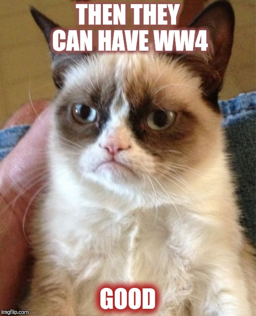 Grumpy Cat Meme | THEN THEY CAN HAVE WW4 GOOD | image tagged in memes,grumpy cat | made w/ Imgflip meme maker