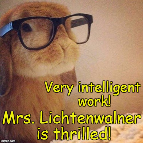 Hipster Bunny | Very intelligent work! Mrs. Lichtenwalner is thrilled! | image tagged in hipster bunny | made w/ Imgflip meme maker
