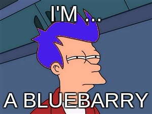 bluebarry |  I'M ... A BLUEBARRY | image tagged in memes,blue futurama fry | made w/ Imgflip meme maker