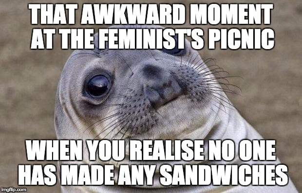 Awkward Moment Sealion Meme | THAT AWKWARD MOMENT AT THE FEMINIST'S PICNIC WHEN YOU REALISE NO ONE HAS MADE ANY SANDWICHES | image tagged in memes,awkward moment sealion | made w/ Imgflip meme maker