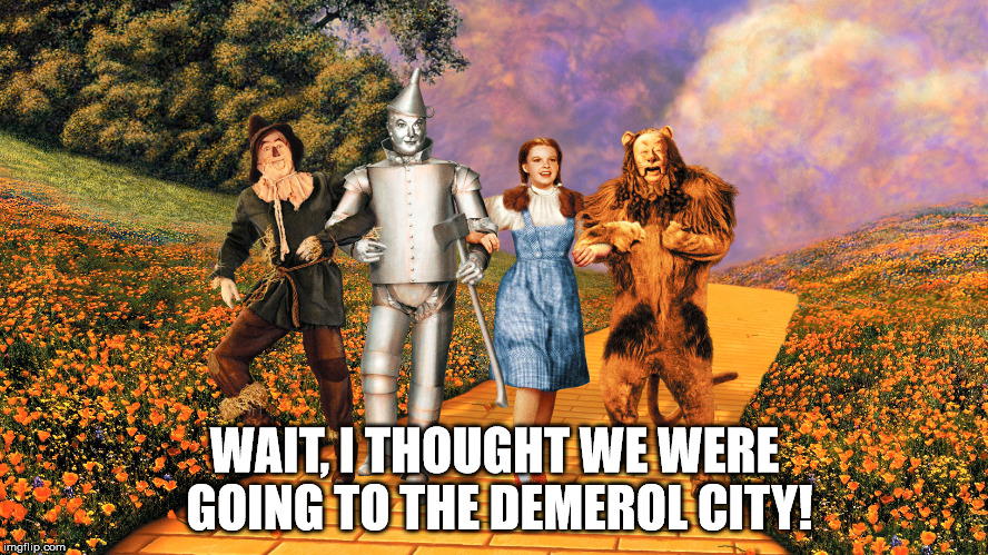 WAIT, I THOUGHT WE WERE GOING TO THE DEMEROL CITY! | image tagged in dorothy gale,wizard of oz | made w/ Imgflip meme maker
