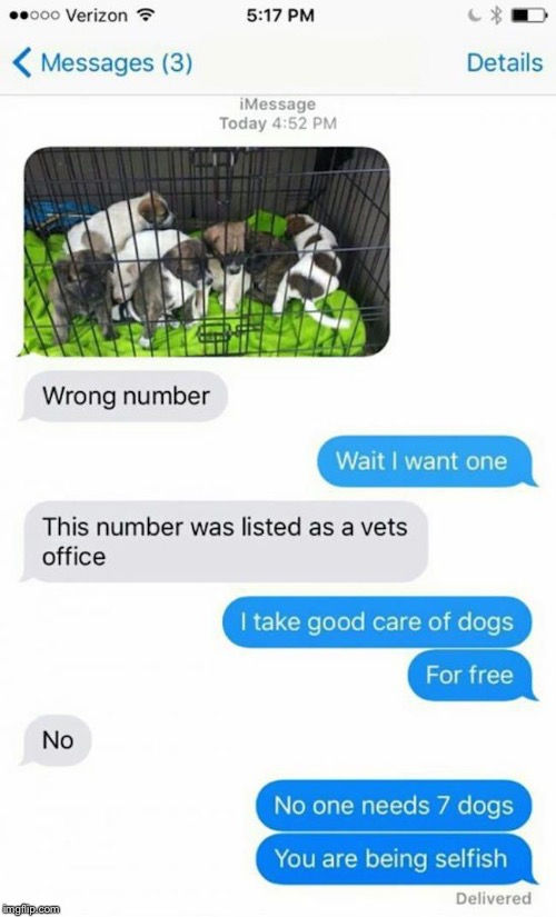 Funny texts | image tagged in texts | made w/ Imgflip meme maker
