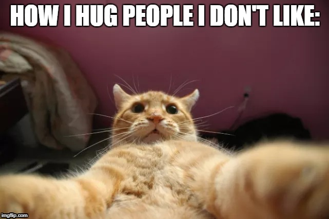 At arms' length is the only way. | HOW I HUG PEOPLE I DON'T LIKE: | image tagged in hug,cat,people i don't like | made w/ Imgflip meme maker
