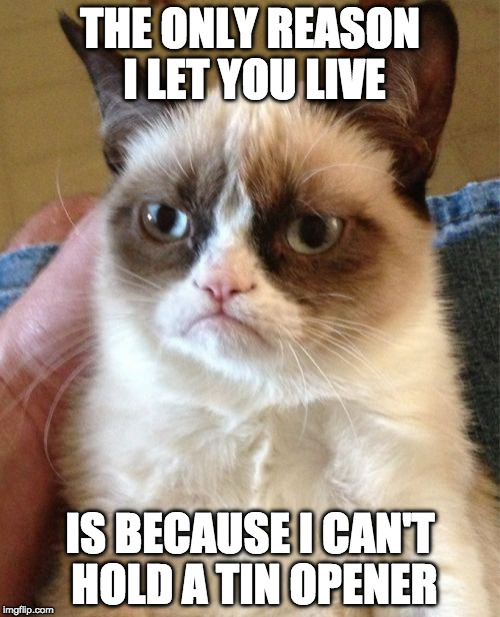 The only reason I let you live | THE ONLY REASON I LET YOU LIVE IS BECAUSE I CAN'T HOLD A TIN OPENER | image tagged in grumpy cat | made w/ Imgflip meme maker