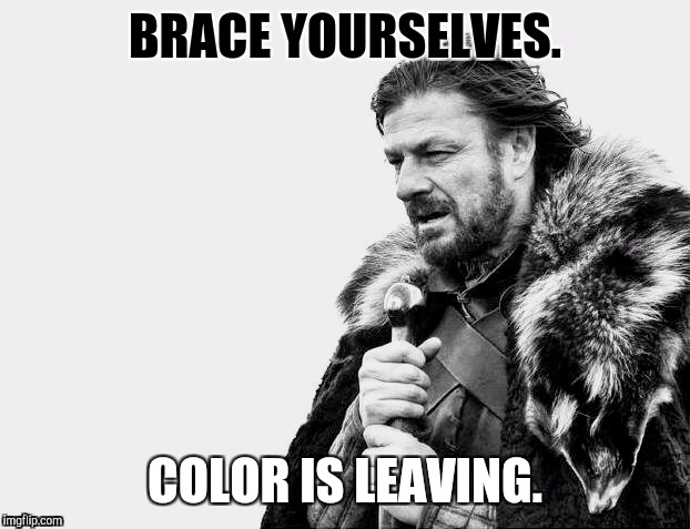 B&W Meme Week! A Pipe_Picasso/DashHopes event. Oct 8 through 14. Brace yourselves. :D | BRACE YOURSELVES. COLOR IS LEAVING. | image tagged in funny,memes,brace yourselves x is coming,bw,imgflip,humor | made w/ Imgflip meme maker
