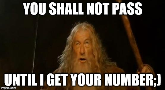 You Shall Not Pass Gandalf | YOU SHALL NOT PASS UNTIL I GET YOUR NUMBER;) | image tagged in you shall not pass gandalf | made w/ Imgflip meme maker