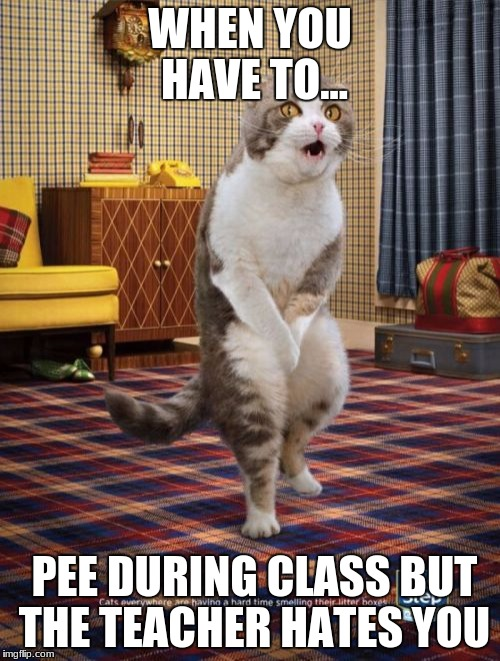Gotta Go Cat | WHEN YOU HAVE TO... PEE DURING CLASS BUT THE TEACHER HATES YOU | image tagged in memes,gotta go cat | made w/ Imgflip meme maker