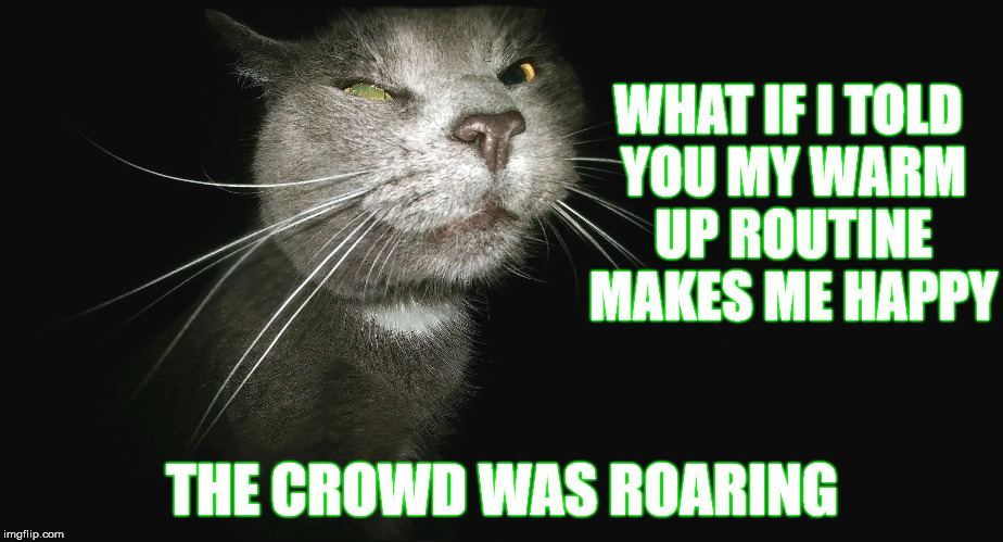 Stalker Cat | WHAT IF I TOLD YOU MY WARM UP ROUTINE MAKES ME HAPPY THE CROWD WAS ROARING | image tagged in stalker cat | made w/ Imgflip meme maker