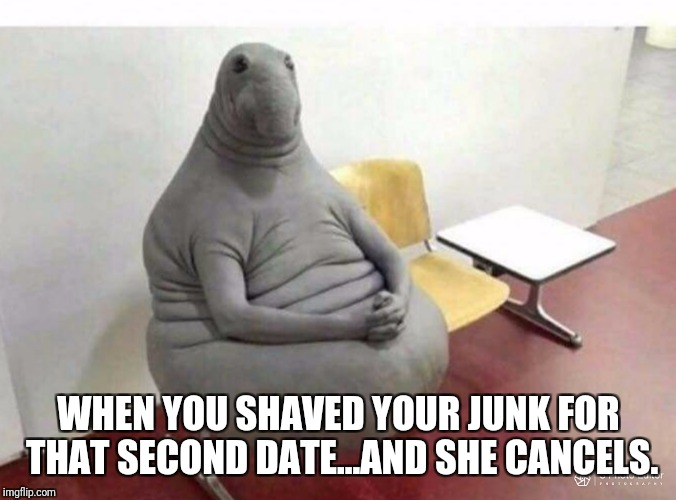 I shaved. She cancelled. And I'm like... | WHEN YOU SHAVED YOUR JUNK FOR THAT SECOND DATE...AND SHE CANCELS. | image tagged in funny memes,dating | made w/ Imgflip meme maker
