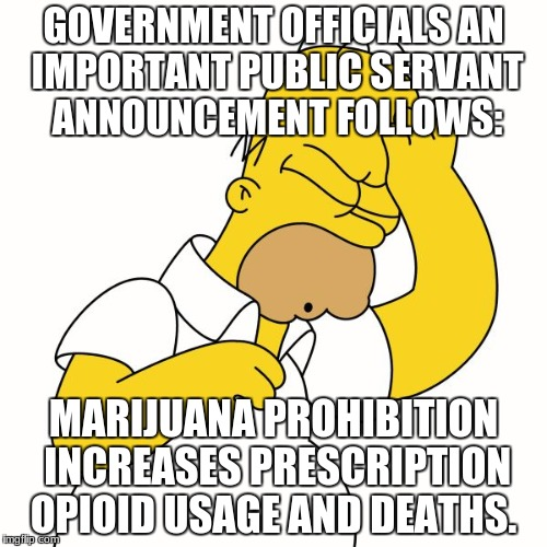 GOVERNMENT OFFICIALS AN IMPORTANT PUBLIC SERVANT ANNOUNCEMENT FOLLOWS: MARIJUANA PROHIBITION INCREASES PRESCRIPTION OPIOID USAGE AND DEATHS. | image tagged in homer simpson d'oh | made w/ Imgflip meme maker