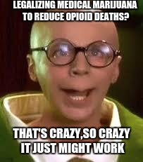 LEGALIZING MEDICAL MARIJUANA TO REDUCE OPIOID DEATHS? THAT'S CRAZY,SO CRAZY IT JUST MIGHT WORK | image tagged in turtle man | made w/ Imgflip meme maker