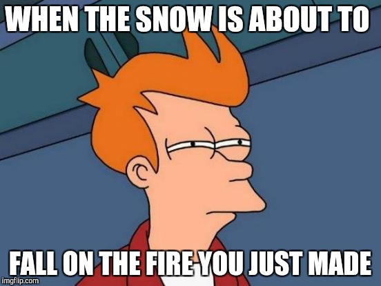 Futurama Fry Meme | WHEN THE SNOW IS ABOUT TO FALL ON THE FIRE YOU JUST MADE | image tagged in memes,futurama fry | made w/ Imgflip meme maker