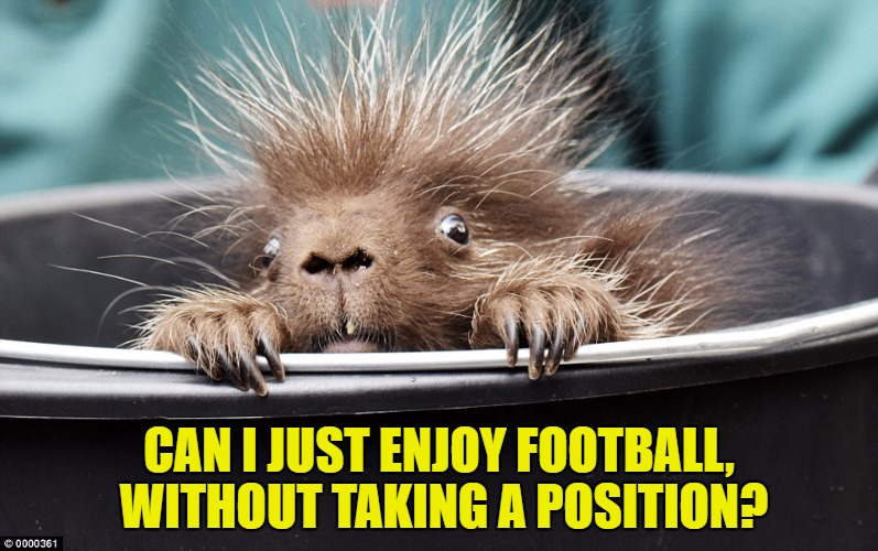 Watching Football | CAN I JUST ENJOY FOOTBALL, WITHOUT TAKING A POSITION? | image tagged in trump,pence,nfl,protest,memes,funny | made w/ Imgflip meme maker