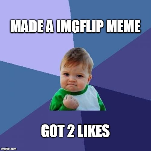 Take what'cha can get around here | MADE A IMGFLIP MEME GOT 2 LIKES | image tagged in memes,success kid,imgflip | made w/ Imgflip meme maker