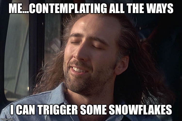 Let's Trigger Some Snowflakes  | ME...CONTEMPLATING ALL THE WAYS I CAN TRIGGER SOME SNOWFLAKES | image tagged in nicholas cage wind in hair | made w/ Imgflip meme maker
