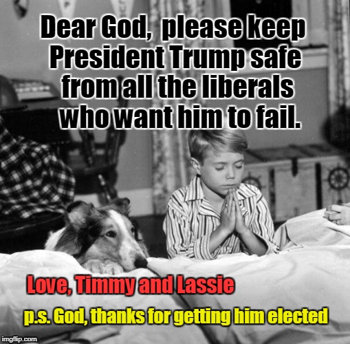 Timmy & Lassie Pray for President Trump  | Dear God,  please keep President Trump safe from all the liberals who want him to fail. Love, Timmy and Lassie p.s. God, thanks for getting  | image tagged in timmy and lassie,trump,liberals,thank you | made w/ Imgflip meme maker