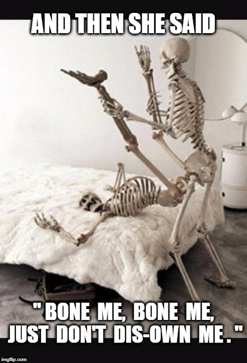 "Halloween | AND THEN SHE SAID "" BONE  ME,  BONE  ME, JUST  DON'T  DIS-OWN  ME . "" 