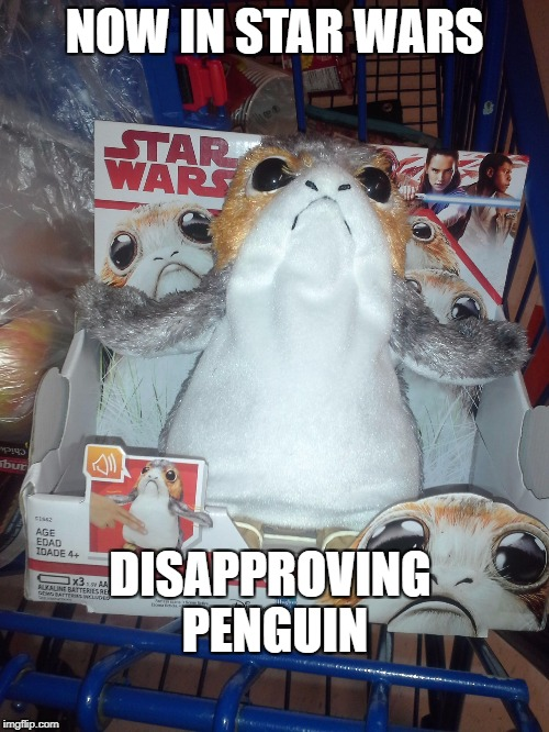 in the next universe over   | NOW IN STAR WARS DISAPPROVING PENGUIN | image tagged in star wars,star wars no,funny | made w/ Imgflip meme maker