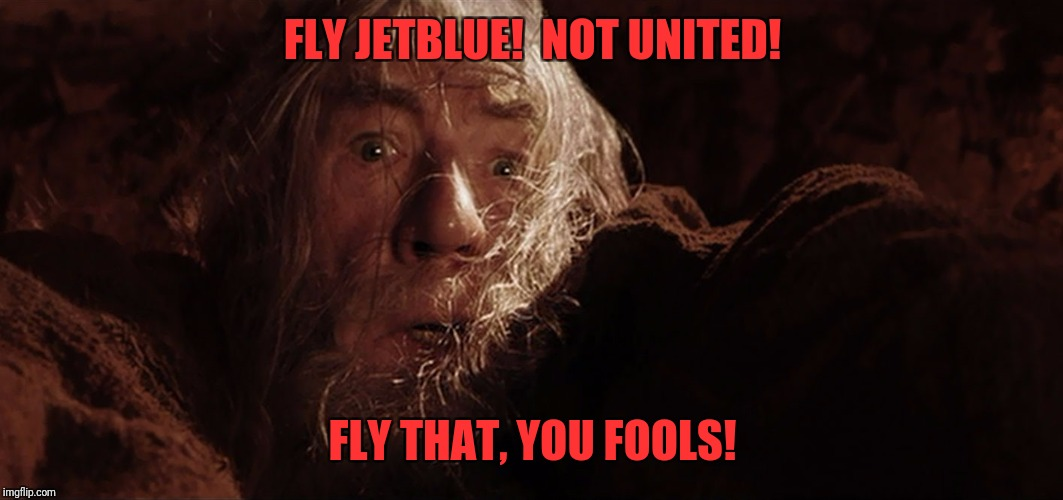 FLY JETBLUE!  NOT UNITED! FLY THAT, YOU FOOLS! | image tagged in fly  you fools | made w/ Imgflip meme maker
