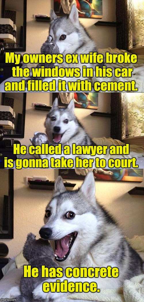 Bad Pun Dog Meme | My owners ex wife broke the windows in his car and filled it with cement. He called a lawyer and is gonna take her to court. He has concrete | image tagged in memes,bad pun dog | made w/ Imgflip meme maker