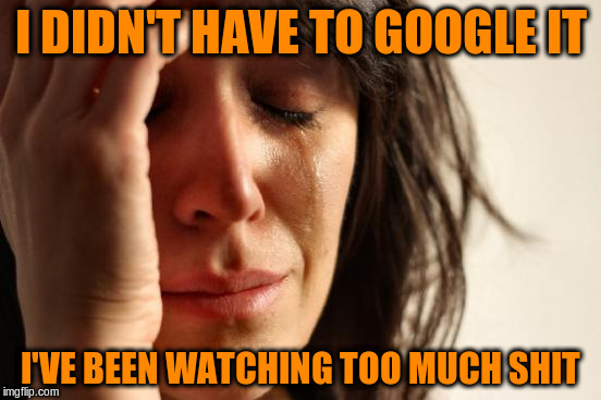 First World Problems Meme | I DIDN'T HAVE TO GOOGLE IT I'VE BEEN WATCHING TOO MUCH SHIT | image tagged in memes,first world problems | made w/ Imgflip meme maker