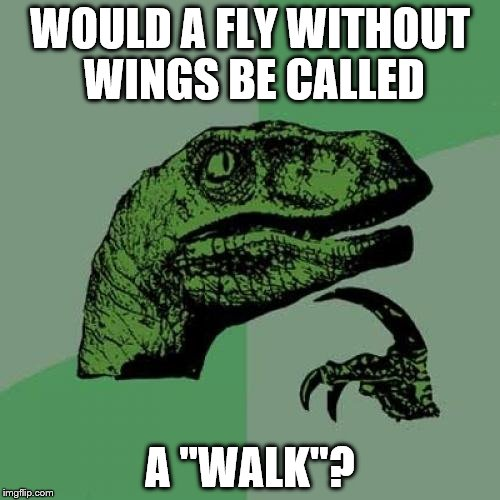 "Wait a minute...... | WOULD A FLY WITHOUT WINGS BE CALLED A ""WALK''? 