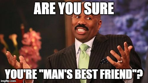 "Steve Harvey Meme | ARE YOU SURE YOU'RE ""MAN'S BEST FRIEND""? 