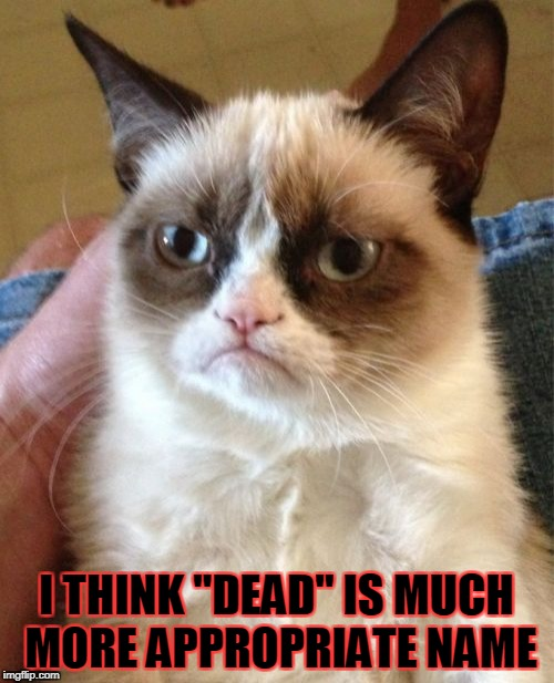 "Grumpy Cat Meme | I THINK ""DEAD"" IS MUCH MORE APPROPRIATE NAME 
