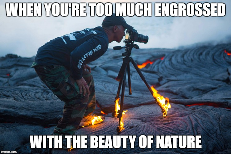Nature is beautiful but harmful | WHEN YOU'RE TOO MUCH ENGROSSED WITH THE BEAUTY OF NATURE | image tagged in beautiful nature | made w/ Imgflip meme maker