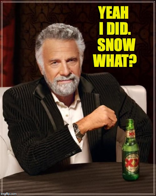 The Most Interesting Man In The World Meme | YEAH I DID.  SNOW WHAT? | image tagged in memes,the most interesting man in the world | made w/ Imgflip meme maker