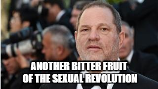 Weinstein | ANOTHER BITTER FRUIT OF THE SEXUAL REVOLUTION | image tagged in scumbag hollywood | made w/ Imgflip meme maker