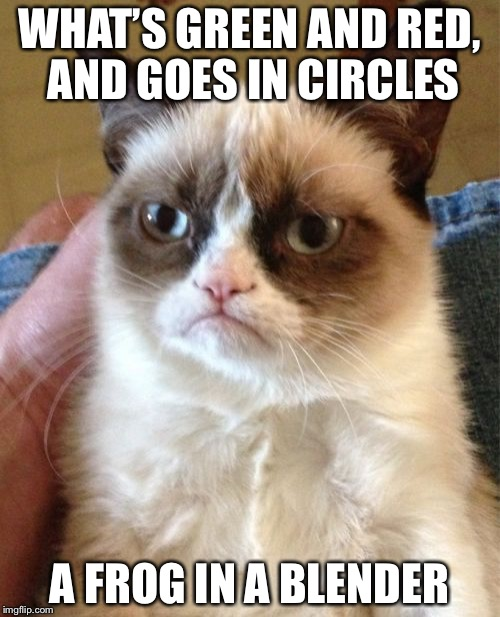 Oh, The Irony  | WHAT'S GREEN AND RED, AND GOES IN CIRCLES A FROG IN A BLENDER | image tagged in memes,grumpy cat | made w/ Imgflip meme maker