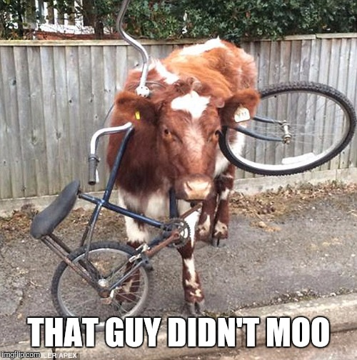 THAT GUY DIDN'T MOO | made w/ Imgflip meme maker