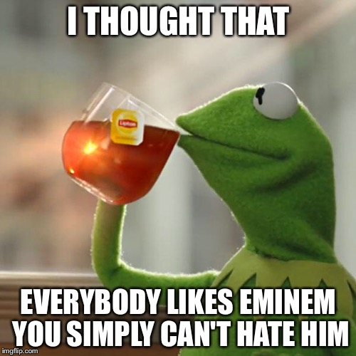 But Thats None Of My Business Meme | I THOUGHT THAT EVERYBODY LIKES EMINEM YOU SIMPLY CAN'T HATE HIM | image tagged in memes,but thats none of my business,kermit the frog | made w/ Imgflip meme maker