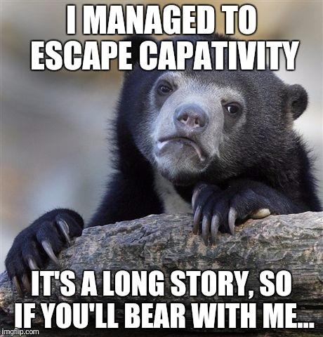 Confession Bear Meme | I MANAGED TO ESCAPE CAPATIVITY IT'S A LONG STORY, SO IF YOU'LL BEAR WITH ME... | image tagged in memes,confession bear | made w/ Imgflip meme maker