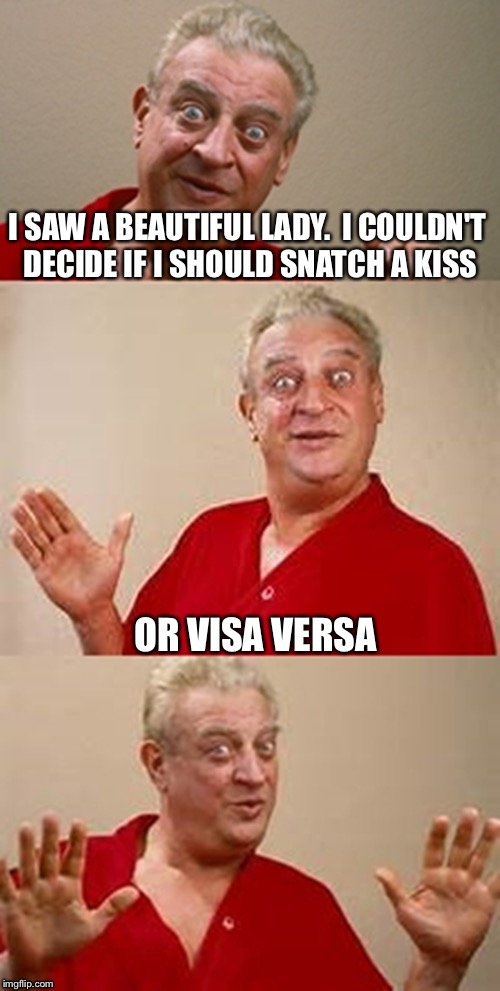 I SAW A BEAUTIFUL LADY.  I COULDN'T DECIDE IF I SHOULD SNATCH A KISS OR VISA VERSA | made w/ Imgflip meme maker