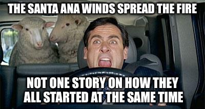 Don't ask us sheeple | THE SANTA ANA WINDS SPREAD THE FIRE NOT ONE STORY ON HOW THEY ALL STARTED AT THE SAME TIME | image tagged in steve carrell sheep,california,stupid,victim,insane | made w/ Imgflip meme maker
