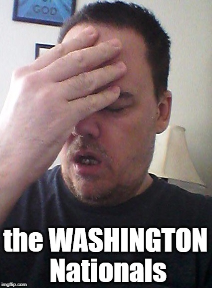 face palm | the WASHINGTON Nationals | image tagged in face palm | made w/ Imgflip meme maker