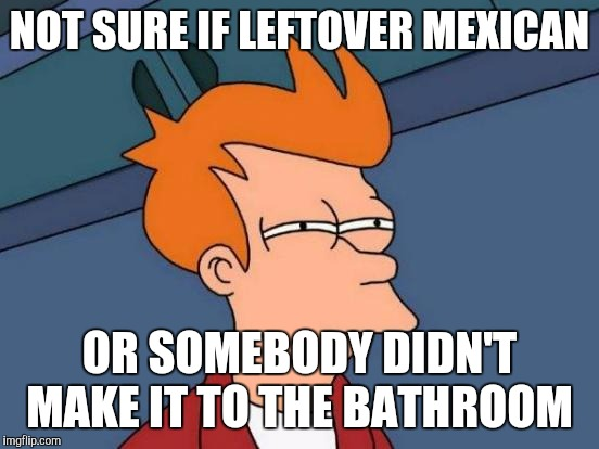 Futurama Fry Meme | NOT SURE IF LEFTOVER MEXICAN OR SOMEBODY DIDN'T MAKE IT TO THE BATHROOM | image tagged in memes,futurama fry | made w/ Imgflip meme maker