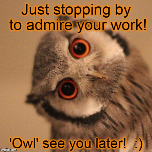 inquisitve owl | Just stopping by to admire your work! 'Owl' see you later!  :) | image tagged in inquisitve owl | made w/ Imgflip meme maker