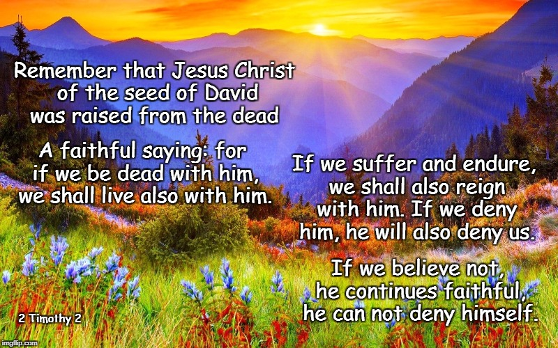 If we suffer we shall reign with him | Remember that Jesus Christ of the seed of David was raised from the dead A faithful saying: for if we be dead with him, we shall live also w | image tagged in 2 timothy 2,jesus christ,faithful | made w/ Imgflip meme maker