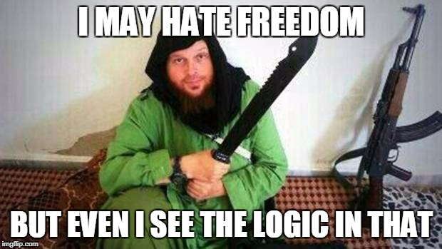 I MAY HATE FREEDOM BUT EVEN I SEE THE LOGIC IN THAT | made w/ Imgflip meme maker